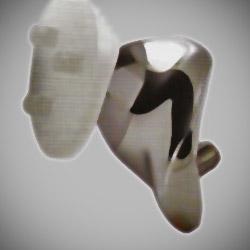 De Patello-Femoraal prothese
